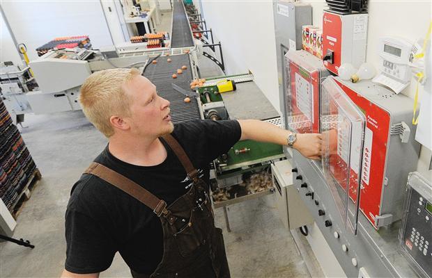 Electricista barato Electricista económico en Valpalmas Directorio de empresas de electricidad, Electricistas económicos en Zaragoza