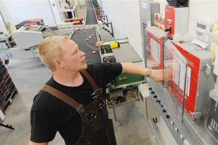 Empresa Electricista low cost en Cisla